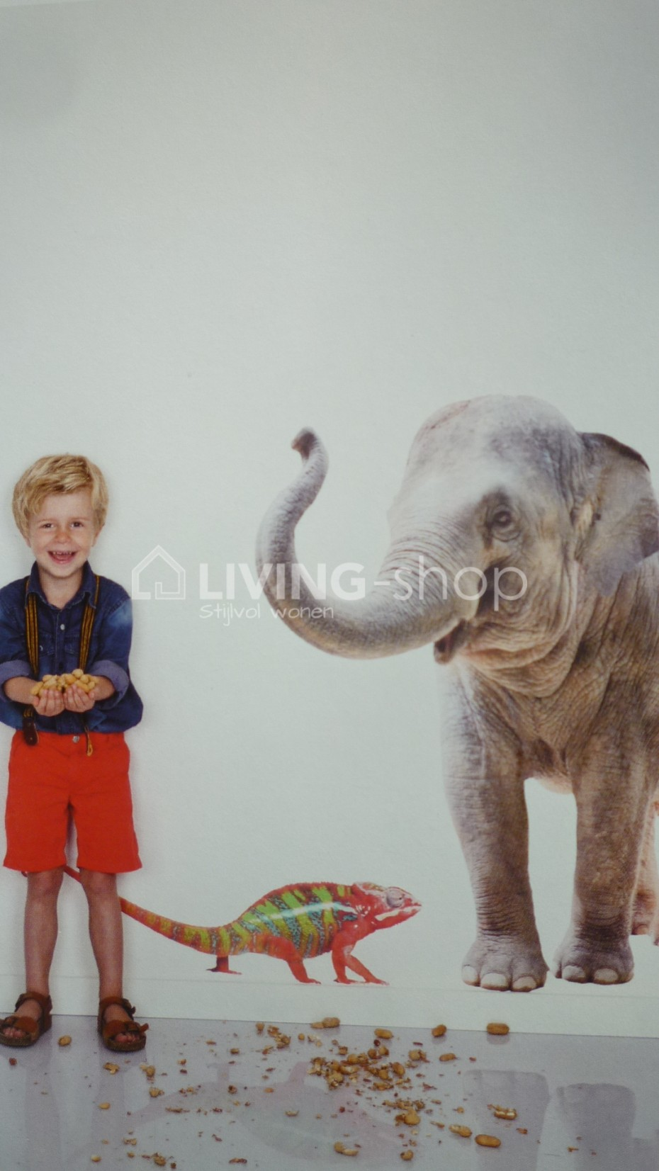 xl-muursticker-olifant