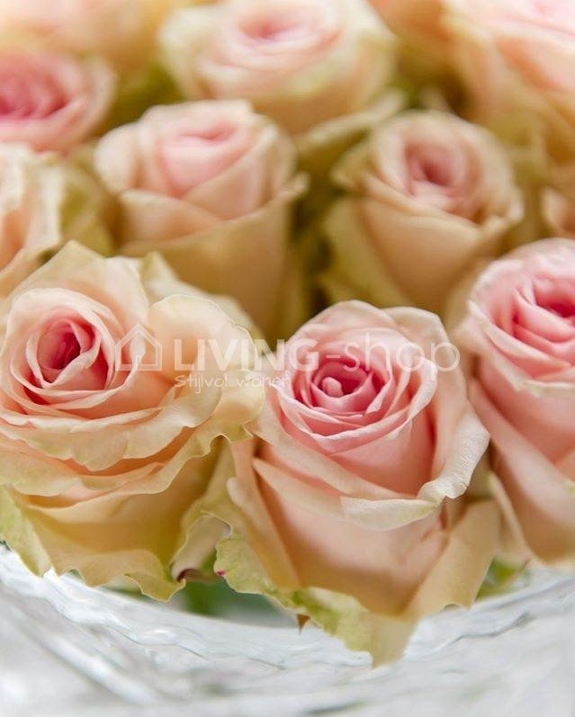 zijde-roos-creme-of-roze